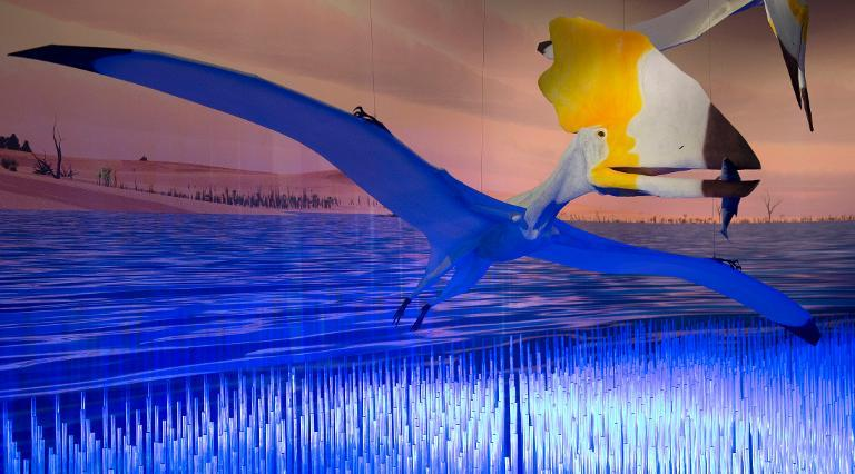 """Part of the exhibit called """"Pterosaurs: Flight in the Age of Dinosaurs"""" at a preview April 1, 2014 at the American Museum of Natural History in New York"""