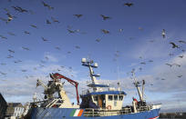 """A fishing vessel comes into the harbour in the fishing village of Howth, Dublin, Ireland, Thursday, Dec. 17, 2020. Irish coastal communities will be """"annihilated"""" if Britain's post-Brexit fishing demands are granted, an Oireachtas committee has been told. (Brian Lawless/PA via AP)"""