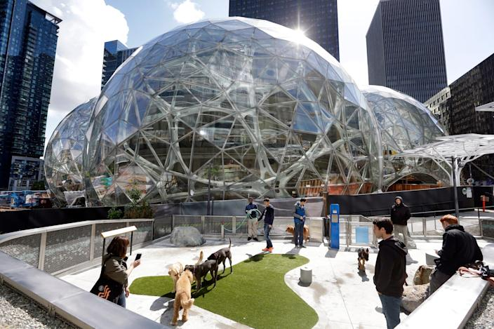 The rooftop dog park at Amazon's headquarters in Seattle, Washington is seen above.