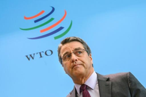 WTO faces first attack from US under Trump