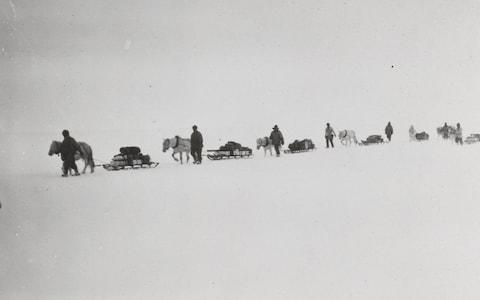 Captain Scott's heroic failure was because he did not have a joker on his team, scientists have said - Credit: Robert Falcon Scott/Scott Polar Research Institute/PA