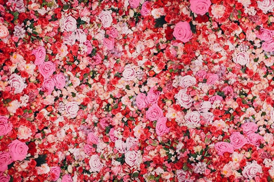 Flower walls are all the rage right now (Alamy/PA)