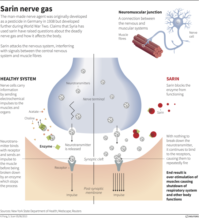 sarin nerve gas effects chart explainer reuters RTX10CKX