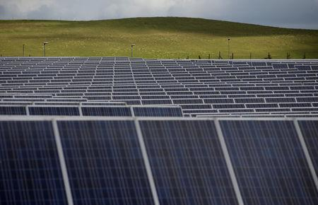 FILE PHOTO: A solar power plant is seen in Canino