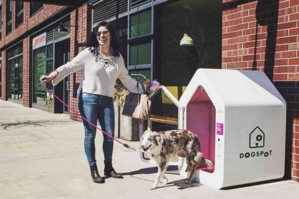 PHOTO: DogSpot offers an air-conditioned space for dogs to wait while their owners are indoors. (DogSpot)