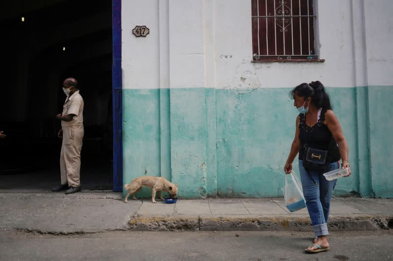 Cuba has approved a long called-for decree on animal welfare