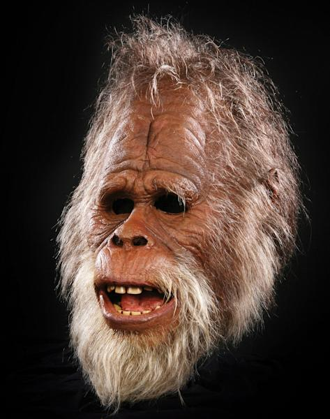 The discovery remains controversial, as the study has not been subject to scientific 'peer review' (Image: Model Bigfoot, Rex)