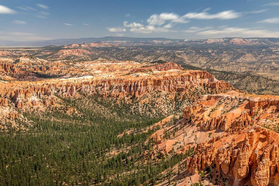 Bryce Canyon As Viewed From Bryce Point At Bryce Canyon National Park, Utah