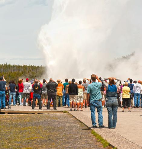 Old Faithful in Yellowstone National Park. (Photo courtesy of Laura Wrede.)