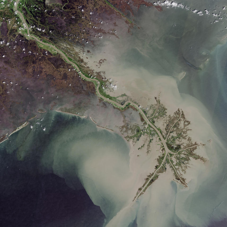 <p>The Mississippi delta reaches out into the Gulf of Mexico. Some of the most beautiful views from space occur at that point where rivers meet the sea. Source: BBC </p>
