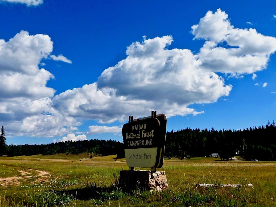 Sitting at the edge of vast meadows, fringed by mixed conifer forest, DeMotte Campground offers 38 single-family sites for tents and RVs near the North Rim of Grand Canyon.
