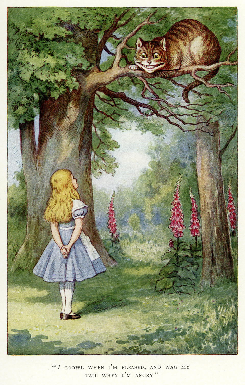 Vintage colour lithograph of Alice and the Cheshire Cat, from Alice's Adventures in Wonderland by Lewis Carroll, John Tenniel.