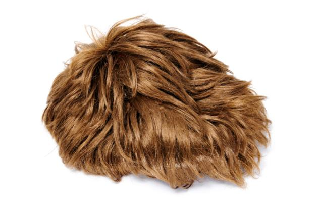 <b><p>#2</b></p> <br><p> 'Merkins' also known as pubic wigs are used the movies to conceal actor's modesty.</p>