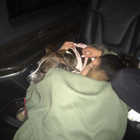 """<p>When Grande's ex-boyfriend, Mac Miler tragically died in 2018, it was reported that Grande had adopted his dog Myron. While she's never confirmed the reports, the singer spends a lot of time with the pup.</p><p><a href=""""https://www.instagram.com/p/B1m_nPcl8Zg/"""" rel=""""nofollow noopener"""" target=""""_blank"""" data-ylk=""""slk:See the original post on Instagram"""" class=""""link rapid-noclick-resp"""">See the original post on Instagram</a></p>"""