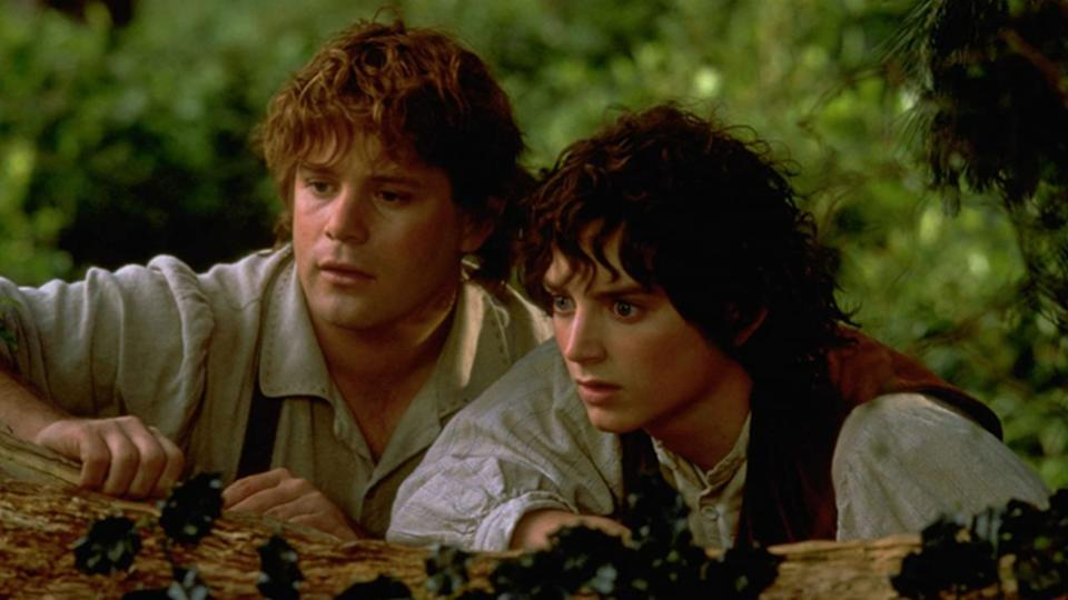 Sean Astin and Eliijah Wood in Lord of the Rings: Fellowship of the Ring