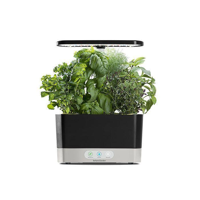 """<p><strong>Aerogarden</strong></p><p>aerogarden.com</p><p><strong>$149.95</strong></p><p><a href=""""https://go.redirectingat.com?id=74968X1596630&url=https%3A%2F%2Fwww.aerogarden.com%2Fharvest-base.html&sref=https%3A%2F%2Fwww.goodhousekeeping.com%2Fhome%2Fgardening%2Fg36521619%2Fbest-indoor-herb-garden-kits%2F"""" rel=""""nofollow noopener"""" target=""""_blank"""" data-ylk=""""slk:Shop Now"""" class=""""link rapid-noclick-resp"""">Shop Now</a></p><p>This hydroponic garden will hold up to six plants and comes with a full spectrum grow light with no soil required. <strong>It comes with liquid plant nutrients and there's an indicator to remind you to fill up the water and add the plant food. </strong>We found that it was very easy to set up and it's compact enough to fit on a window ledge. </p><p>The lights are on a timer and stay on for 15 hours. Although the Aerogarden Harvest claims to grow plants up to six times faster than soil, we found that the plants grew slower compared to other indoor gardens we tried that used already growing seedlings. </p>"""