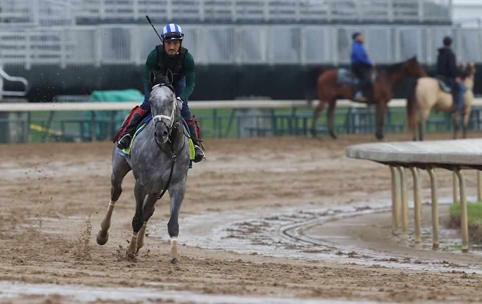 LOUISVILLE, KENTUCKY - APRIL 29:  Essential Quality runs on the track during the training for the Kentucky Derby at Churchill Downs on April 29, 2021 in Louisville, Kentucky. (Photo by Andy Lyons/Getty Images)