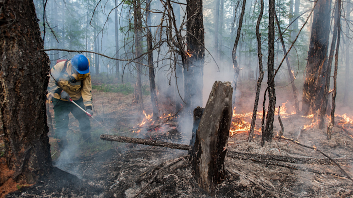 Fires in Siberia are said to be linked to the very warm conditions being experienced there
