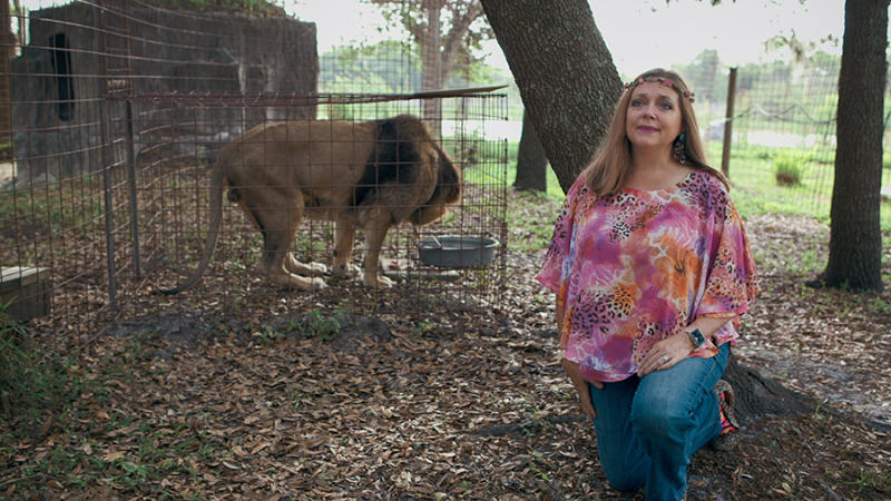 Tiger King's Carole Baskin has slammed Netflix for her portrayal in the docuseries in particular the episode about her former husband's mysterious disappearance. Photo: Netflix