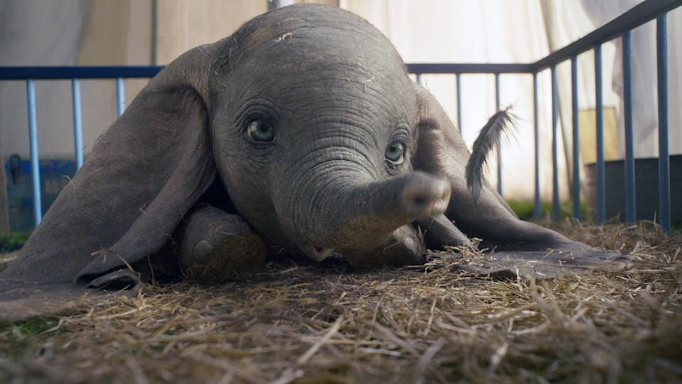 Dumbo finds a magic feather in the 2019 <em>Dumbo</em> remake. (Photo: Walt Disney Studios Motion Pictures / courtesy Everett Collection)