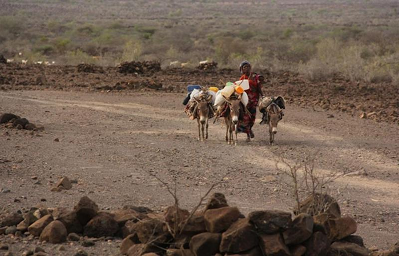 10_06_africa_climate_migration