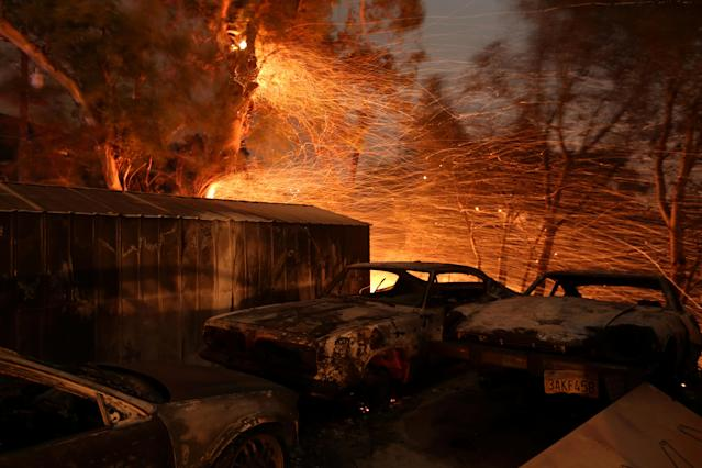 <p>Embers blow from a tree shortly before it fell down near burned cars as strong winds push the Thomas Fire across thousands of acres near Santa Paula, Calif., Dec. 5, 2017. (Photo: David McNew/Reuters) </p>