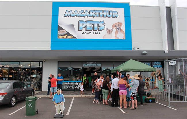 Staff members at the store in Gregory Hills are desperate for Everest's return. Photo: Facebook/Macarthur Pets