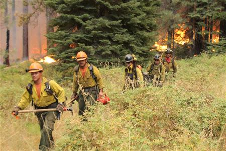 Firefighters hike away from a section of the Rim Fire in Yosemite National Park in this September 1, 2013 handout photo. REUTERS/Mike McMillan/USFS/Handout