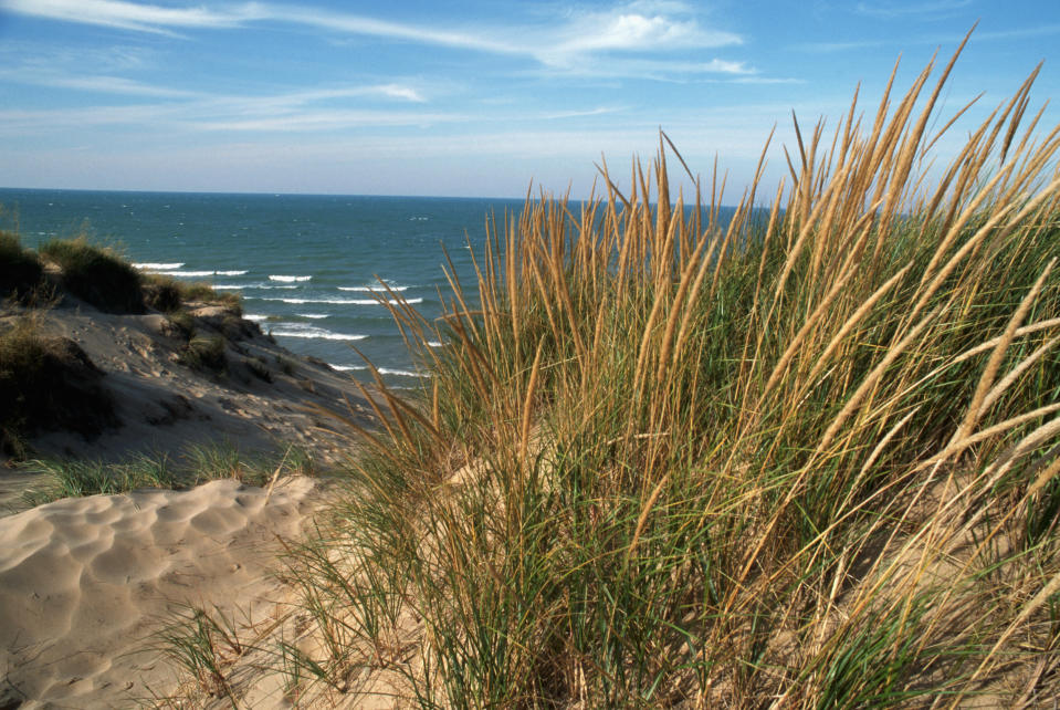 The dunes along Lake Michigan. (Photo: Layne Kennedy/Getty Images)