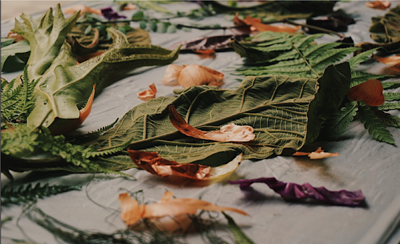 Using plants and leaves for natural dyes. (PHOTO: Mini)