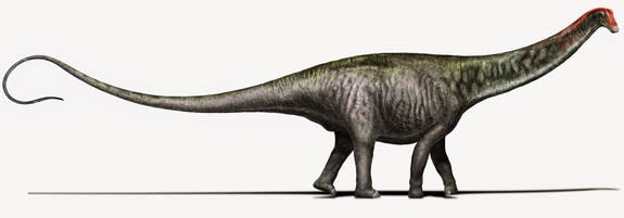 This illustration reveals Brontosaurus as researchers see it today, with a Diplodocus-like head.
