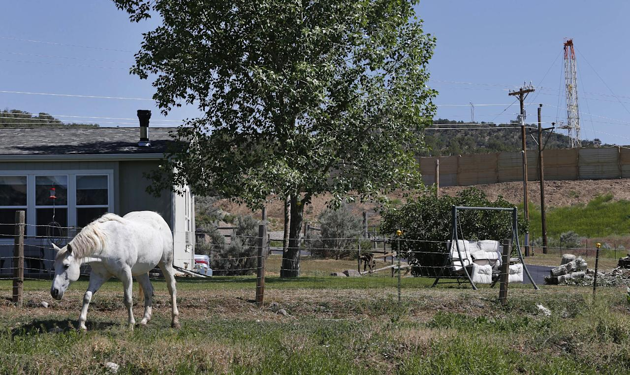 This photo taken June 9, 2014 shows a horse named Primo grazing in front of the home of local resident Joann Aramillo, with an oil and gas rig on a well pad visible a few hundred yards away, top right, in New Castle, a small farming and ranching settlement on the Western Slope of the Rockies, in Colo. Four in 10 new oil and gas wells near national forests and fragile watersheds or otherwise identified as higher pollution risks escape federal inspection, unchecked by an agency struggling to keep pace with America's drilling boom, according to an Associated Press review that shows wide state-by-state disparities in safety checks. (AP Photo/Brennan Linsley)