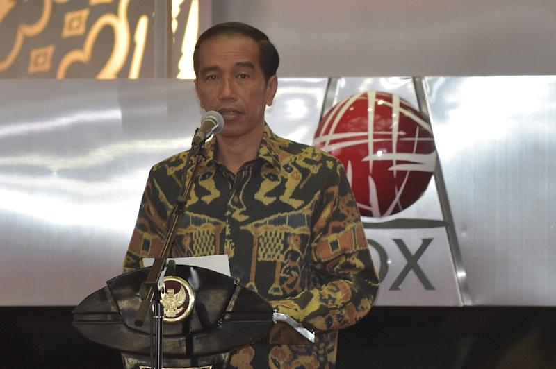 President Joko Widodo, who took power in 2014, was the country's first leader from outside the political and military elites (AFP Photo/Adek Berry)