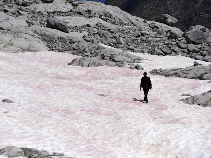 A man walks on at the Presena glacier near Pellizzano, Italy, where the snow has turned pink, supposedly due to the presence of a common alga, July 4, 2020.