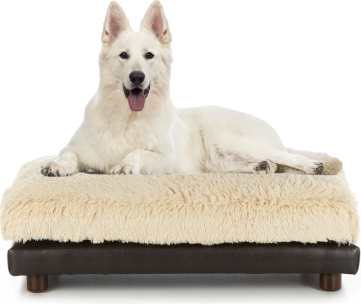 "$279, Chewy. <a href=""https://www.chewy.com/club-nine-pets-soho-milo-sofa-cat-dog/dp/233878"" rel=""nofollow noopener"" target=""_blank"" data-ylk=""slk:Get it now!"" class=""link rapid-noclick-resp"">Get it now!</a>"