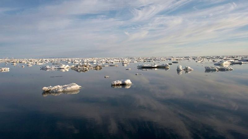 Arctic Undergoing Rapid Ice Melt That Could Speed Global Warming: Study