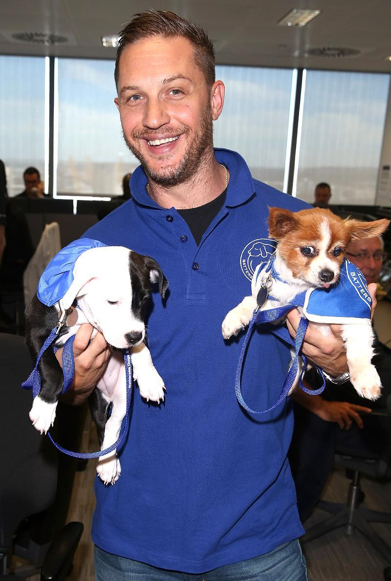 <p>The <em>Peaky Blinders</em> actor is always willing to make sacrifices to help animal charities. Posing for a photograph with these two cuties, at the BGC Annual Global Charity Day in London in <span>support of Battersea Dogs and Cats Home, was light-lifting. (Photo by Tim P. Whitby/Getty Images)</span> </p>