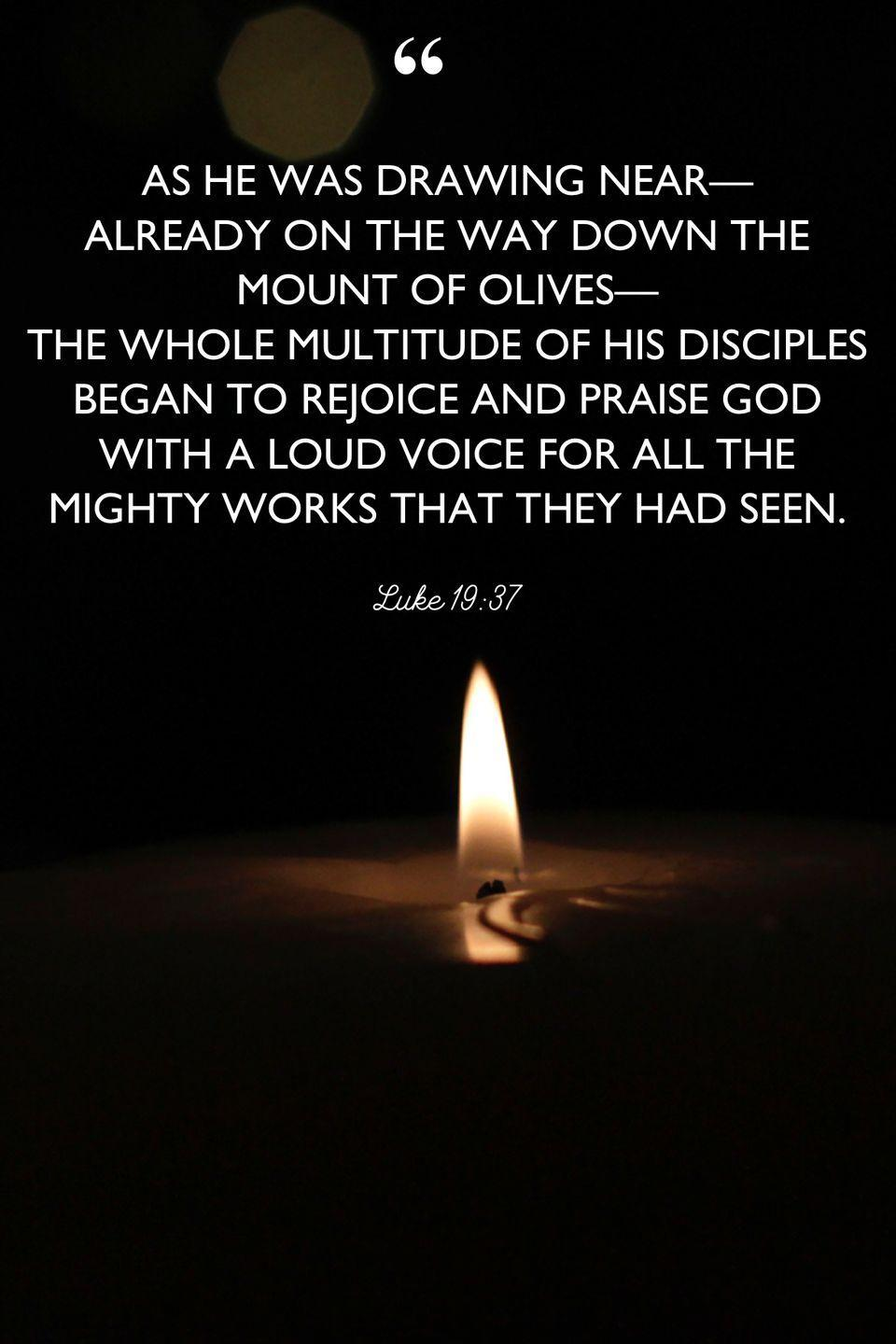 """<p>""""As he was drawing near—already on the way down the Mount of Olives—the whole multitude of his disciples began to rejoice and praise God with a loud voice for all the mighty works that they had seen.""""</p>"""