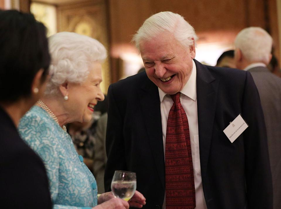 The Queen and Sir David have been spotted together at lots of events over the years. Here they are at an event at Buckingham Palace to showcase forestry projects that have been dedicated to the new conservation initiative - The Queen's Commonwealth Canopy in 2016. (Yui Mok/PA Wire)