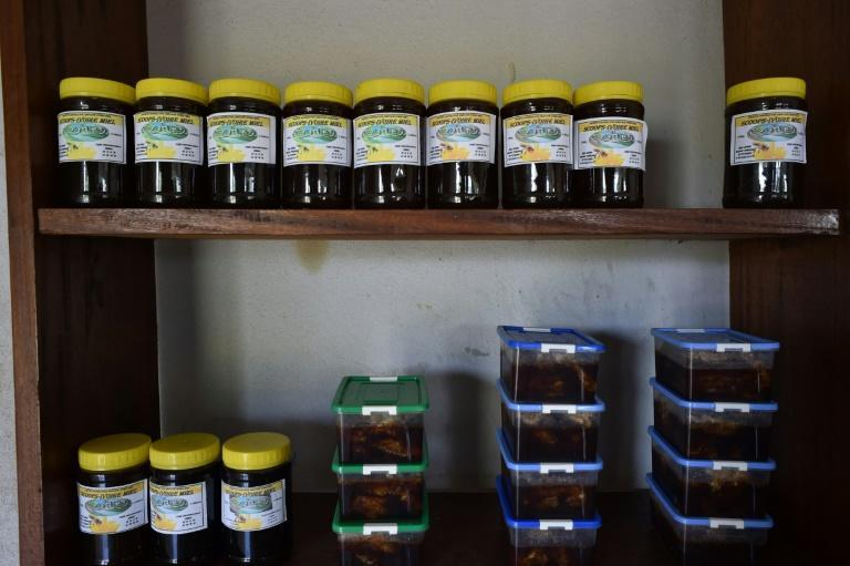 Experts say the outlook for beekeeping in Ivory Coast is promising -- the country has a huge array of tropical flowers and trees to provide nectar