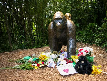 Flowers lay around a bronze statue of a gorilla and her baby outside the Cincinnati Zoo's Gorilla World exhibit in Cincinnati, Ohio