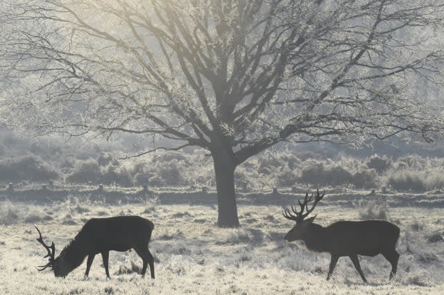 Will warm weather last until Christmas?