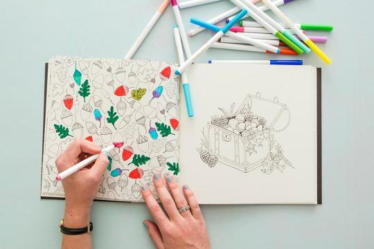 The Increase In Interest Toward This Childlike Pastime Has Stemmed Largely From Recent Popularity Of Enchanted Forest A Coloring Book By UK Based