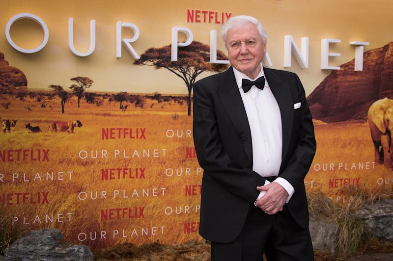 Sir David Attenborough poses for photographers upon arrival for the premiere of a new series of Our Planet, at the Natural History Museum in central London, Thursday, April 4, 2019. (Photo by Joel C Ryan/Invision/AP)