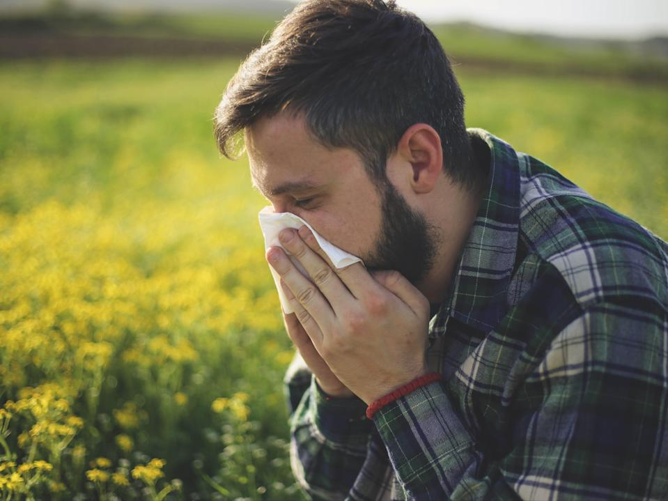 High pollen count has been forecast for the UK this week (Getty Images/iStockphoto)