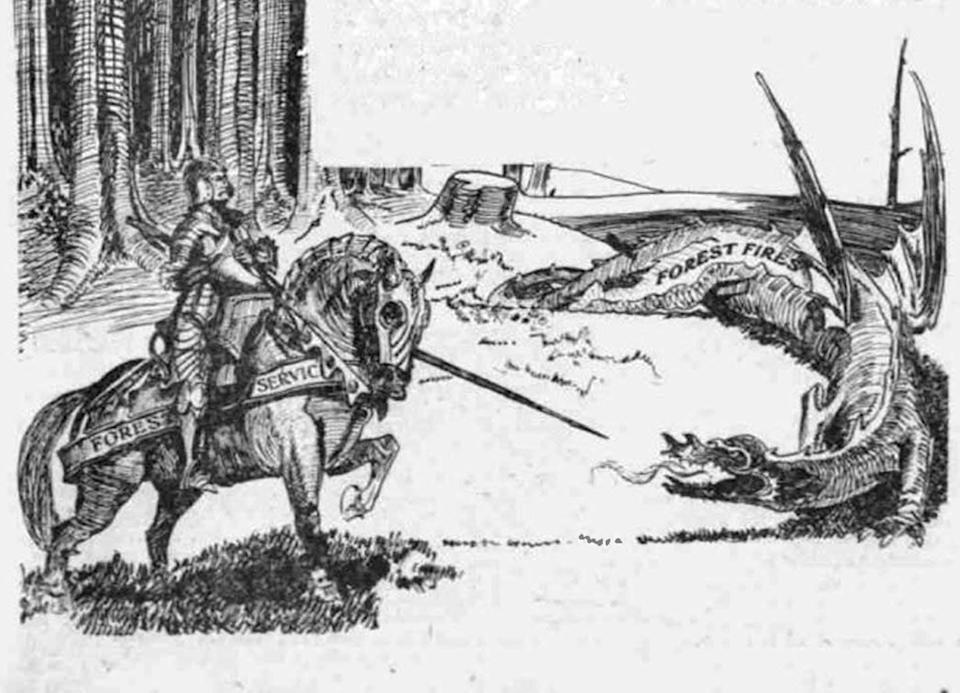 Editorial cartoon of a knight on a horse, marked Forest Service, fighting a dragon on the edge of a forest.