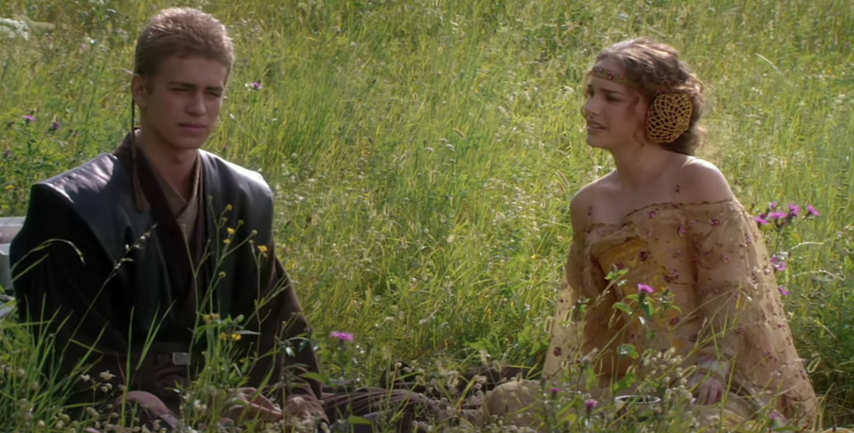 Anakin and Padmé sitting in a field of flowers