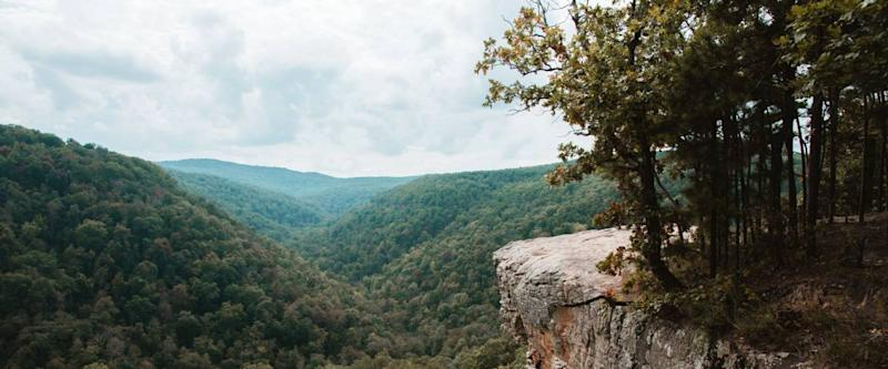 Bluff lines and rock formations at Hawksbill Crag Hiking Trail