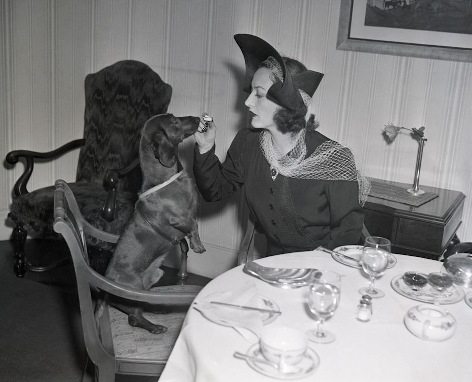 """<p>It's well documented that no one, not even the stars of yesteryear, can resist a puppy cuddle. During the<a href=""""https://www.goodhousekeeping.com/life/g30143210/old-hollywood-stars-on-set-photos/"""" rel=""""nofollow noopener"""" target=""""_blank"""" data-ylk=""""slk:Golden Age of Hollywood"""" class=""""link rapid-noclick-resp""""> Golden Age of Hollywood</a>, it was common for stars to be gifted a pet from a fan or their studio to be used as a promotional tool for an upcoming film. Meanwhile other stars, like<a href=""""https://www.goodhousekeeping.com/beauty/fashion/g1550/elizabeth-taylor-wedding-dresses/"""" rel=""""nofollow noopener"""" target=""""_blank"""" data-ylk=""""slk:Elizabeth Taylor"""" class=""""link rapid-noclick-resp""""> Elizabeth Taylor</a> and <a href=""""https://www.goodhousekeeping.com/life/entertainment/g3641/audrey-hepburn-vintage-photos/"""" rel=""""nofollow noopener"""" target=""""_blank"""" data-ylk=""""slk:Audrey Hepburn"""" class=""""link rapid-noclick-resp"""">Audrey Hepburn</a>, were quite simply just animal lovers. Here, see photos of some of the most glamorous Old Hollywood stars and their pets.</p>"""