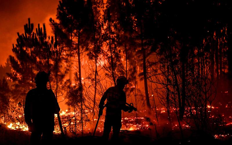 Firefighters are at work to extinguish a wildfire in Cardigos village in Macao, central Portugal on July 21, 2019. | PATRICIA DE MELO MOREIRA/Getty Images